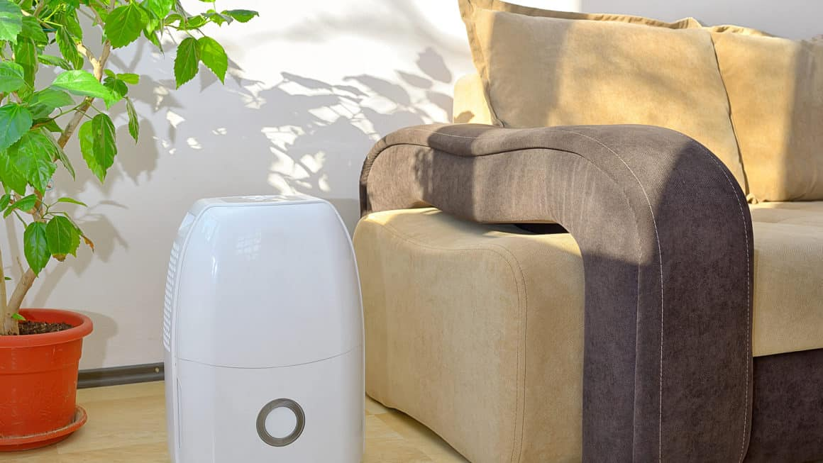 8 Best Dehumidifiers In Canada 2020 – Review & Guide
