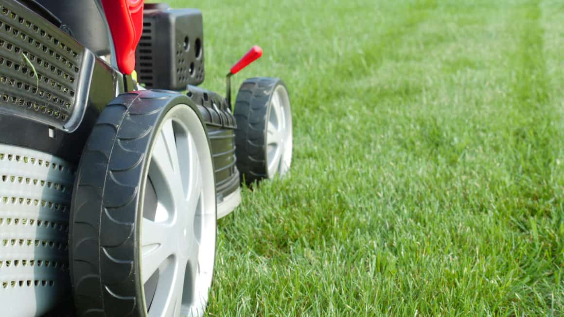 10 Best Lawn Mowers In Canada 2020 – Review & Guide
