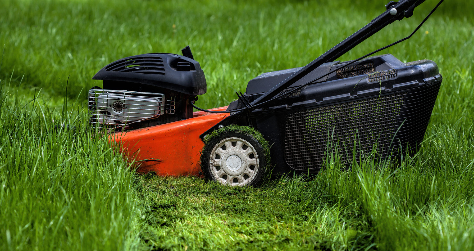 Notable Aspects To Consider Before Buying A Lawn Mower